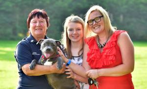 Middlewich Guardian: Middlewich dog trainer helps dyslexic schoolgirl grow in confidence. Click here to read more